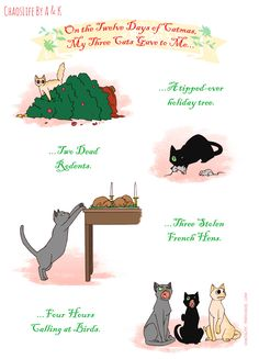 On the Twelve Days of Catmas, My Three Cats Gave to Me (part I)