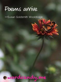 Poems arrive. Photo by Susan Etole