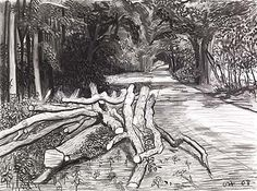 David Hockney More Crooked Timber on Woldgate, 2008 charcoal on paper, David Hockney Landscapes, David Hockney Paintings, Landscape Drawings, Landscape Paintings, Landscape Art, Gustav Klimt, Van Gogh Zeichnungen, Van Gogh Drawings, Pop Art