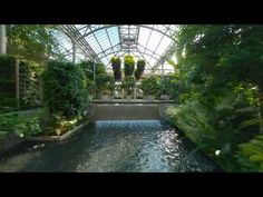 (3) Fly Through the Conservatory - YouTube Stuff To Do, Things To Do, Longwood Gardens, Conservatory, Botanical Gardens, Perspective, Display, Places, Outdoor Decor