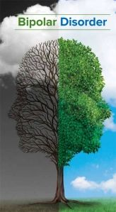 Guest Post: Everything You Need to Know About Bipolar Disorder | Bipolar Bandit Bipolar Depression Treatment, Psychiatric Nurse Practitioner, Psychiatric Nursing, Mental Health Facilities, Mental Health Conditions, People With Bipolar Disorder, Anxiety Disorder, Natural Medicine For Anxiety
