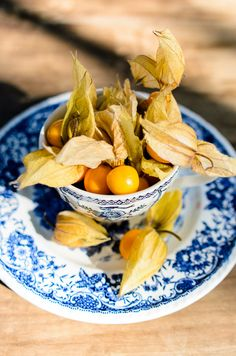 Delft teacups Pocket Full Of Sunshine, Come Dine With Me, Snack Recipes, Snacks, Blue And White China, Delft, Food Design, A Food, Meals