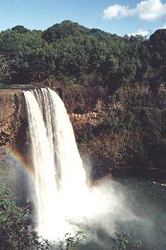 Hiked into the rainforest to see Waimea Falls on Oahu