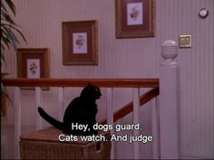 The 40 Greatest Things Ever Said By Salem The Cat. I loved this show!