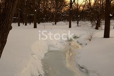 The rising sun makes splashes of gold on a frozen stream.
