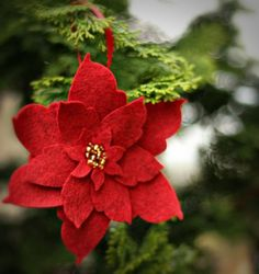 poinsettia ornament. I like the smaller petals in the center. From etsy