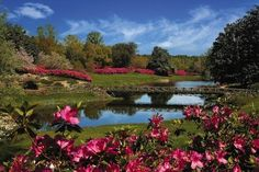 10 glorious gardens to explore | Compass - Yahoo! Travel: Man, I love gardens. I wanna go to all of these!