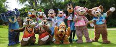Free Disney World Countdown Printable - Life. Disney World Countdown, Walt Disney World Vacations, Disney Prom, Cute Disney, Disney Cruise, Disney World Magic Kingdom, Disney Magic, Duffy The Disney Bear, Walter Elias Disney