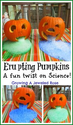 Erupting Pumpkins Experiment for Kids ~ Growing A Jeweled Rose