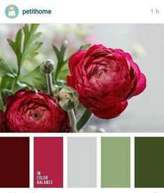 "Palette A vibrant mix of raspberry-red shades with muted ""dusty"" shades of green will look very good in a classic living room.A vibrant mix of raspberry-red shades with muted ""dusty"" shades of green will look very good in a classic living room. Colour Pallette, Color Palate, Colour Schemes, Color Combos, Color Patterns, Green Palette, Cores Rgb, Design Seeds, Color Swatches"