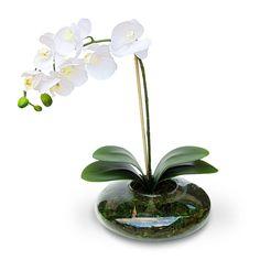 arranjo de flores artificiais orquideas brancas cachepot vidro ikebana