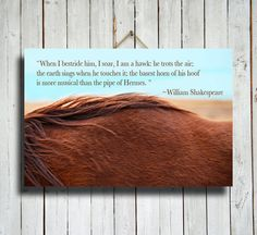 Red Mane  Horse photography  Horse Quote  by EmeraldTownRaven, $108.00