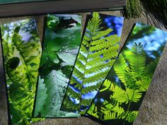 Garden fern bookmarks. Many other designs too. Handmade. Luxurious look & feel. Great gift https://img1.etsystatic.com/125/0/8965783/il_fullxfull.990930529_jb5q.jpg #etsymntt #bookmark #gift