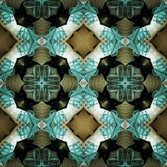 Shoe laces rollerskates pattern symmetry nicola yeung