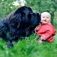 BeingDogs.com | I can look at pictures of babies and dogs together all day long.