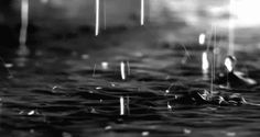Black And White Depressing Nature | ... of rain chuva gotas de chuva preto e branco black and white my edit
