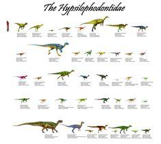 The Hypsilophodontidae: 40 Genera
