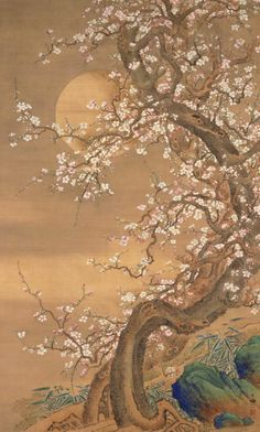 Pink and white plum blossoms in moonlight 梅月図 Shizan Sō,  1735-1805