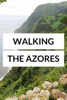The Azores are the perfect place for slowtravel and hiking. Check out these 5 stunning hiking trails on the main island of Sao Miguel!