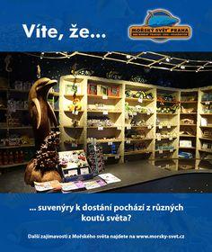 Víte, že... #morskysvet #morskysvetpraha #seaworld #seaworldprague #praha #prague #touristprague #zoo #viteze #ryby #zraloci #koraly #hledasenemo Sea World, Prague