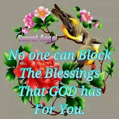 No one can block the Blessings that God has for you!