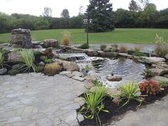 Elegant backyard patio with a water garden featuring a nice waterfall to circulate the fresh clear water.