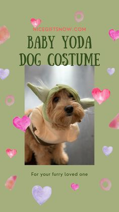 May the force be with you, and zap you have a cute dog, not in a faraway galaxy. Dressing up your dog is such a treat not to mention dressing him in one of the cutest and most iconic figures in the galaxy, Yoda. Your dog would become the master of all Jedi dogs in this amazing and cute costume that is sure to be a blast. Let the force awakens and lives once again. Yoda Dog Costume, Cute Dog Costumes, Leia Costume, Star Wars Baby, Star Wars Darth, All Jedi, Star Wars Costumes, Fun Gifts, Dog Show