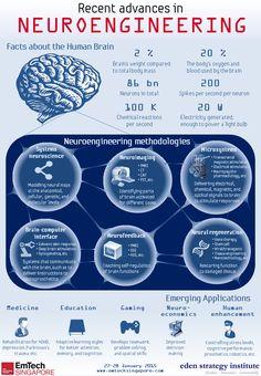 Recent advances in Neuroengineering Istanbul New Airport, Physics And Mathematics, Futuristic Interior, School Info, Yamaha R6, Brain Science, Future Goals, Neurons, Self Improvement Tips