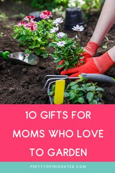 When you're buying for someone who loves spending time in the garden, there's a huge selection of great gift ideas out there. These 10 Great Gift Ideas for Mothers Who Love Gardening will help you find the perfect present! Creative Gifts, Cool Gifts, Best Gifts, Christmas Gift List, Holiday Gifts, Mother Day Gifts, Gifts For Mom, Perfect Mother's Day Gift, Perfect Plants