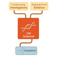 New Generation Science Standards -  Find your path through the Next Generation Science Standards with help from the Concord Consortium.