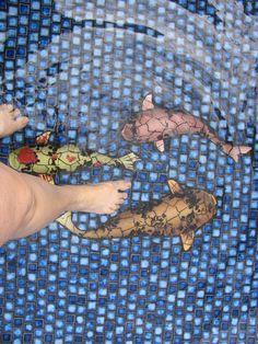 Molokai Hawaii Installation Of Koi Fish Ceramic Tile Mosaic Murals