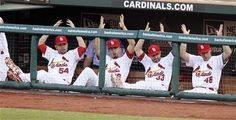 Louis Cardinals players Jaime Garcia, Kyle Lohse, Daniel Descalso and Tony Cruz clap in unison from the bench after catcher Yadier Molina threw out Chicago Cubs' David DeJesus in the third inning on Monday, May at Busch Stadium in St. Cardinals Players, Cardinals Baseball, St Louis Cardinals, Jaime Garcia, St Louis Baseball, Chicago Cubs, Girls Best Friend, I Laughed, Haha