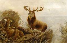 Fine Large 19th Century Deer Stag Highland Landscape Antique OIl Painitng #Realism