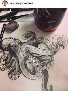 Resultado de imagen para octopus drawing tattoo