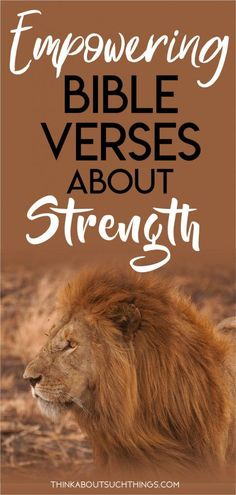 34 Empowering Bible Verses About Strength