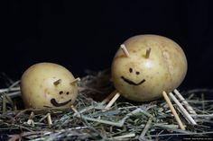 """© Blende, Neela Buchholz (14 Jahre), Kartoffelkäfer mit Kind, Thema: """"Guten Appetit"""" #Fotowettbewerb"""