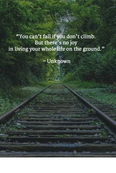 """""""You can't fall if you don't climb.  But there's no joy  in living your whole life on the ground.""""   – Unknown"""