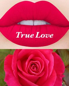 Lime Crime Velvetine in True Love New, never opened, no box. Lime Crime Velvetine matte liquid lipstick in True Love. Price is firm, no trades. Lipstick Colors, Red Lipsticks, Lip Colors, Bold Lipstick, Lipstick Shades, Makeup Lipstick, Lime Crime True Love, Love Makeup, Beauty Makeup