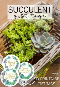 Printable Succulent Gift Tags for teachers neighbors parents baby showers family and friends. Shop Succulent Studio's Succulent Gift Box as a reoccurring gift service. Creative Gift Wrapping, Creative Gifts, Teacher Appreciation Gifts, Teacher Gifts, Succulent Gifts, Cupcake Bakery, Homemade Snickers, Gift Tags Printable, Neighbor Gifts