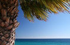 #Fuerteventura #Kanaren #Spanien #CanaryIsland #Spain #Opodo