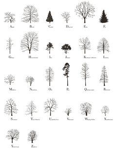 Tree Alphabet (2015)