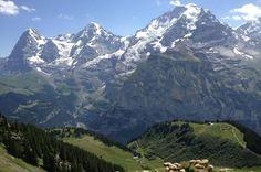 Eiger Mnche Jungfrau near Mrren CH  #landscape #eiger #mnche #jungfrau #near #mrren #photography