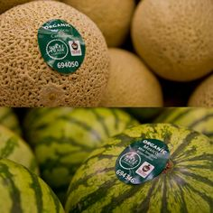 These delicious Fair Trade Certified cantaloupes & watermelons help provide clean water & medical care to farmers! (Available now at Whole Foods)