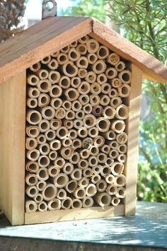 Bee Hotel made of bamboo tubes insect hotels should be close enough to shrubs, trees, garden to provide food for them.