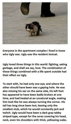Ugly's Story...PLEASE READ THIS, IT WILL MAKE YOU WEEP BUT SHOW YOU WHAT UNCONDITIONAL LOVE REALLY IS...:(:)