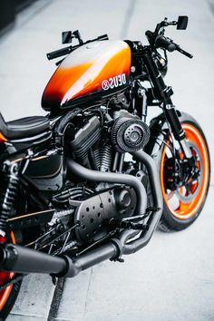 Deus maakt gewoon even de dikste Harley die je deze week gaat zien Ducati, Deus Ex Machina, Triumph, Bmw, Surf Outfit, Courses, Cool Bikes, Bobber, Harley Davidson