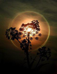 Sunset…♥♥♥