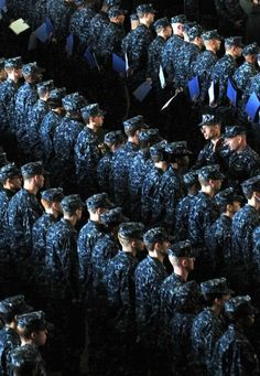 Navy Uniforms, Concert, Concerts