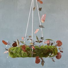 """Transform a favorite wreath into a striking chandelier with this adjustable, three-pronged hanger, found only at terrain. The expandable hooks hold the wreath horizontally above a table, where it can be embellished with seasonal greens, garlands, and lights.- A terrain exclusive- Iron- Wipe clean with soft, dry cloth- Indoor or outdoor use- Imported30""""H, 4.5"""" diameter (closed)"""