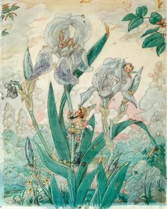 """Iris"" by Harold Gaze. Original watercolor and pencil drawing, 1929."